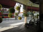 window display3 080626.jpg